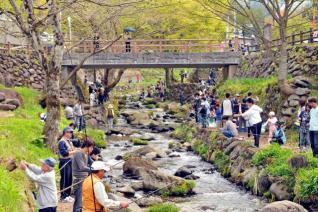 姫路公園まつり