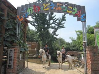澀川動物公園