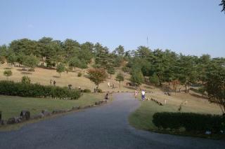 広島県立歴史民俗資料館