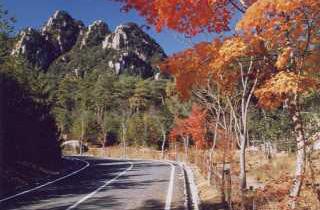 三倉岳県立自然公園キャンプ場