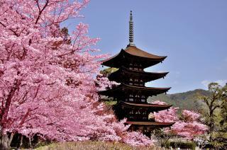 瑠璃光寺五重塔2