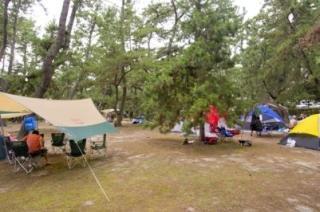 虹ケ浜キャンプ場