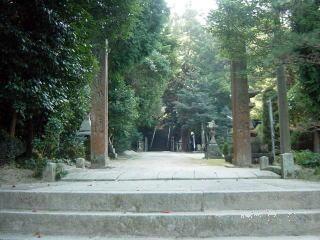 高松八幡宮樹林