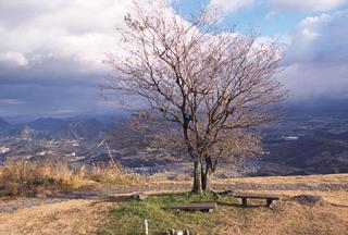 Shiroyama observatory★46212ad3350046737