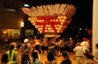 shimanto市民節~節伴奏shimanto~