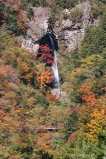 大荒の滝(遠景)
