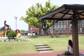 中の坪公園