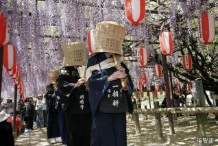 定禪寺的紫藤