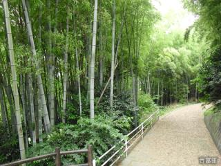 鈴熊山公園
