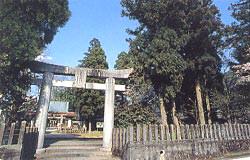 久多良木神社の森