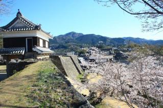 臼杵城址桜まつり
