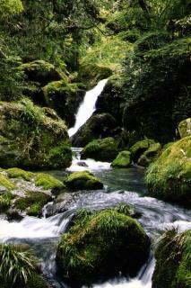 清水瀑園滝開き