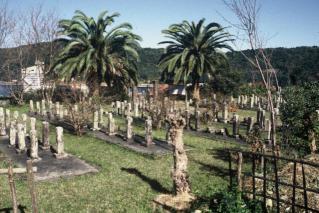 西南的任務細島官軍墓地