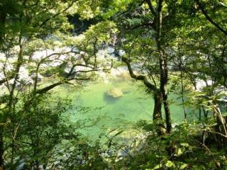 森林セラピー川中自然公園コース