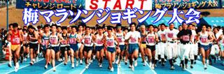 いじゅういん梅マラソンジョギング大会