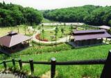 大亀山森林公園キャンプ場