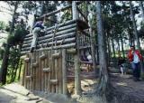 大亀山森林公園フィールドアスレチック