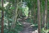 深山自然観察路