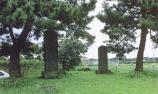 菜切谷廃寺跡