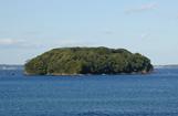 椿島暖地性植物群落