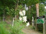 益子県立自然公園「益子の森」