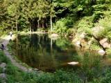 日本紅點鮭中心