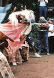 小中獅子舞