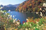 洞元湖(体験観光)