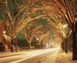 NIIGATA光のページェント雪景色
