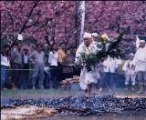 白蛇神社春季大祭(火渡り行事・刃渡り行事)