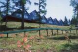 長者の森キャンプ場