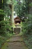 大山田神社の社叢