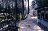 富士養鱒場