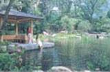 竹ケ沢公園