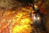 嵯峨野トロッコ列車