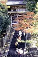 金刀比羅神社の紅葉