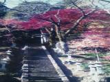 天神社の紅葉