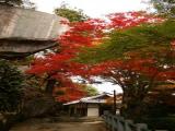 笠置寺(行場めぐり)