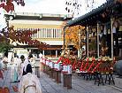 Shimotsuki Festival★33209ba2212054365
