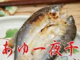 香魚·amago的一夜曬幹