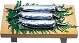 秋刀魚zushi