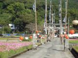 須賀神社 秋祭り